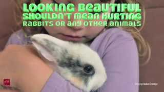 FM Cosmetics Are Not Tested On Animals